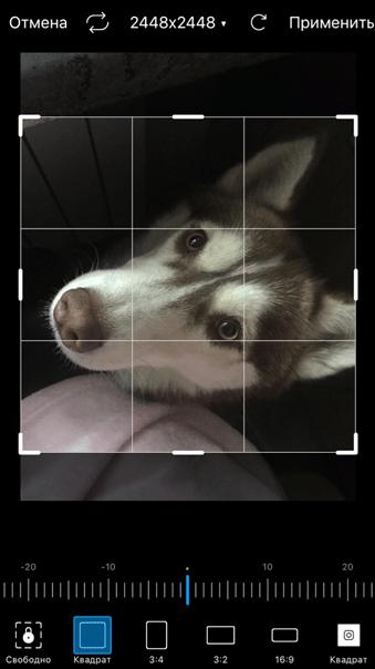 Улучшить качество фото. Квадрат