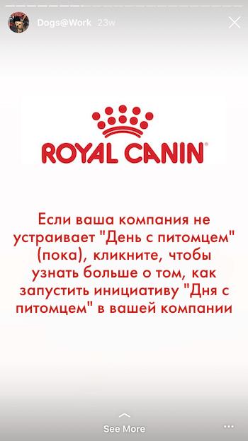 Инстаграм истории. Royal Canin 2