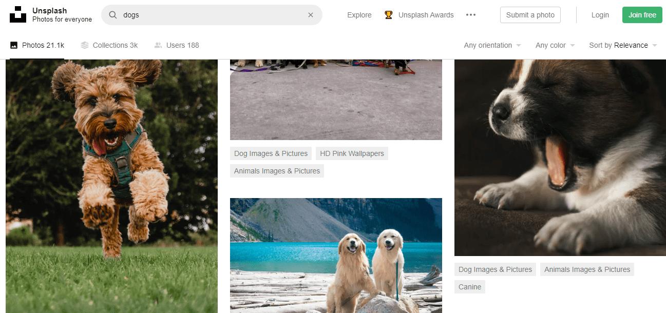 Бесплатные изображения. Unsplash